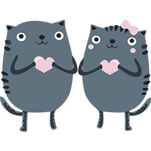 Couple shirts Love cats