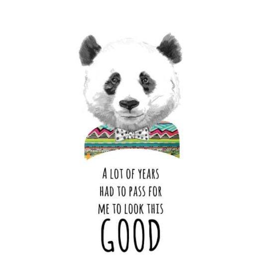 Women shirts Panda